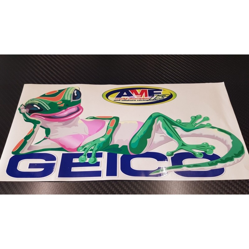 MISS GEICO stickers pour ELECTRA